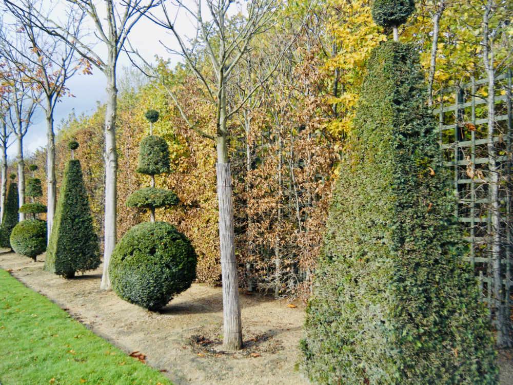 Jardins à la Française at Versailles Palace