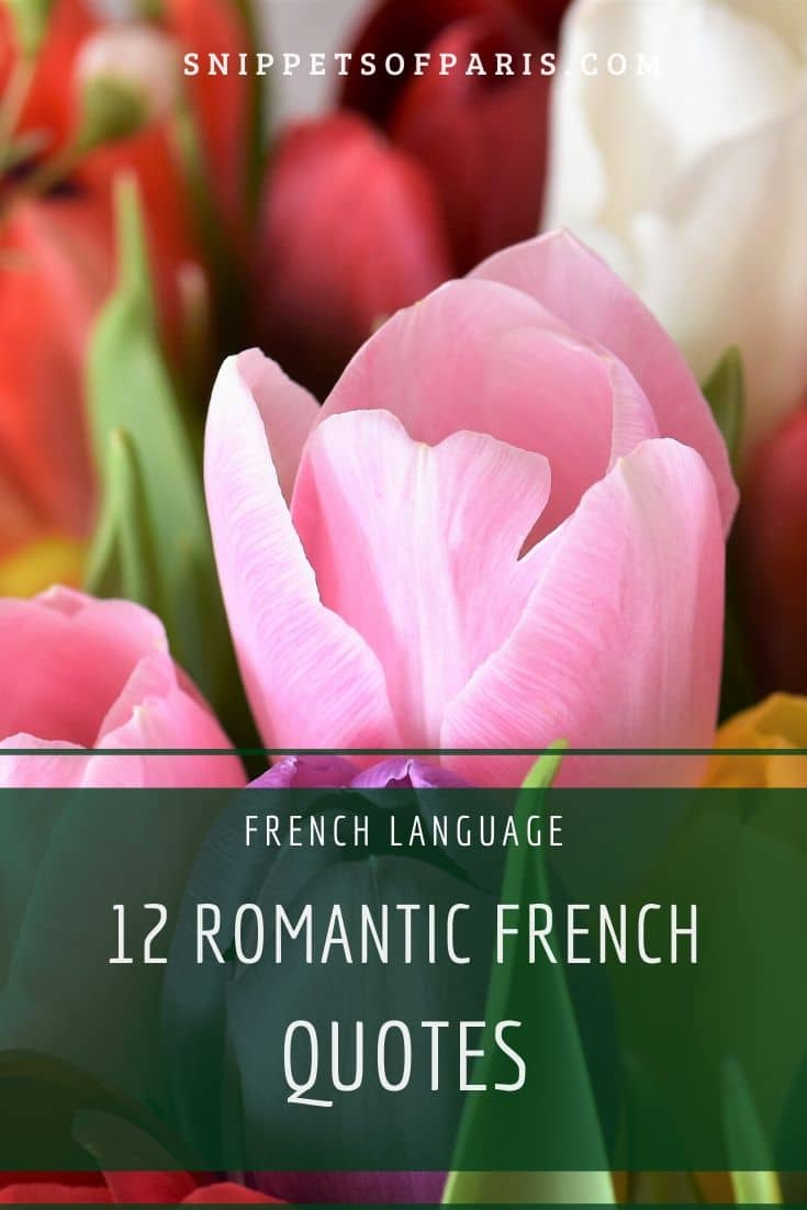24 French Love Quotes to make your heart flutter