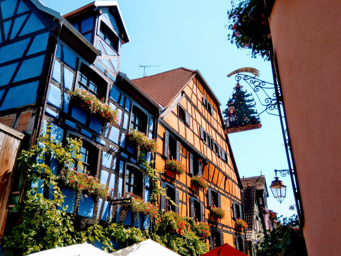 The Enchanting Medieval village: Colmar in France
