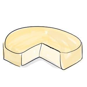 camembert shaped round cheese