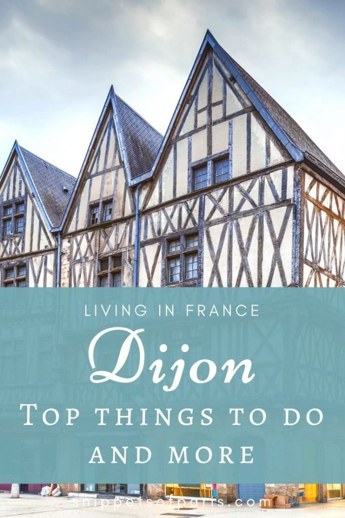 things to do in Dijon, France pin