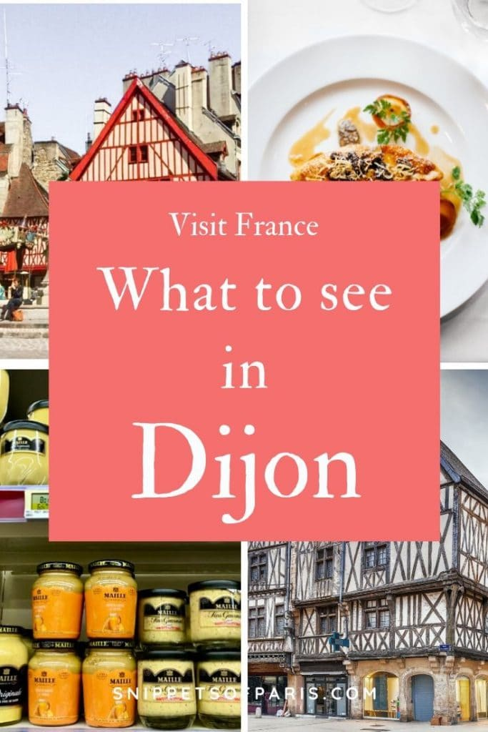 what to see in Dijon pin