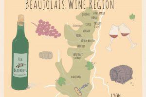 Beaujolais Wines: Are they any good?