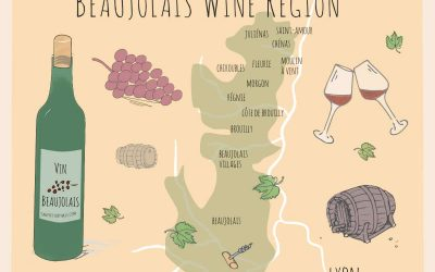 Beaujolais Wines: The Nouveau Wine of November