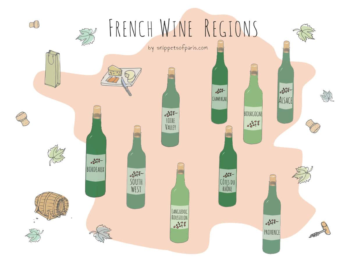 French Wines: An Easy Guide to (fancy) Wine Regions