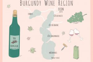 Wines from Burgundy: the Easy Guide to some heavy hitters
