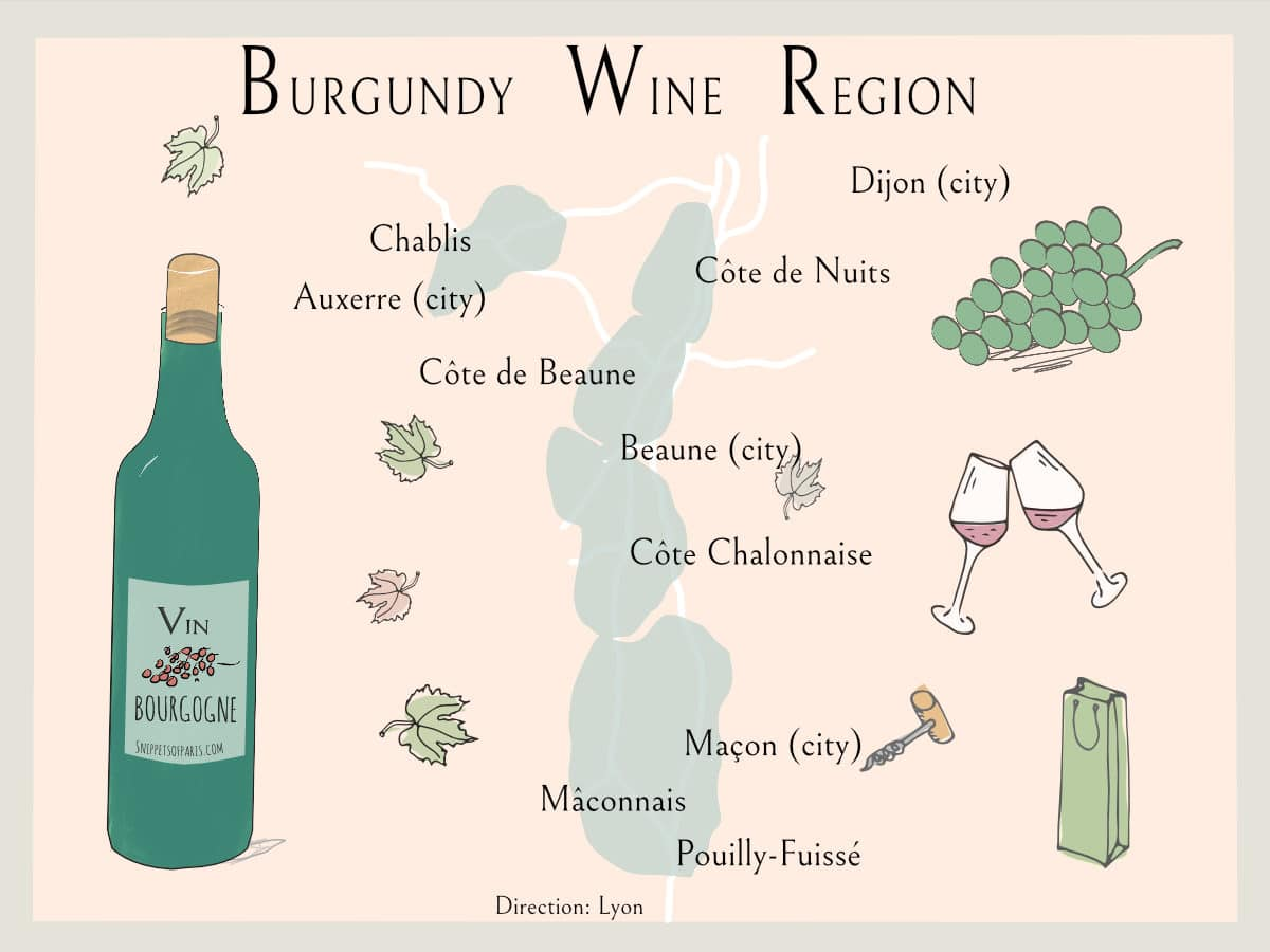Read more about the article Wines from Burgundy Region: the Easy Guide to great wine