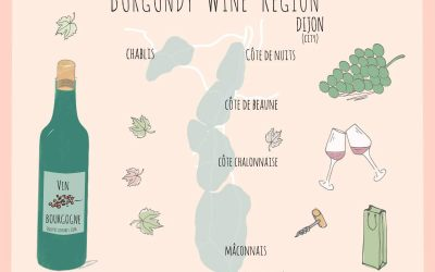 Wines from Burgundy Region: the Easy Guide to great wine
