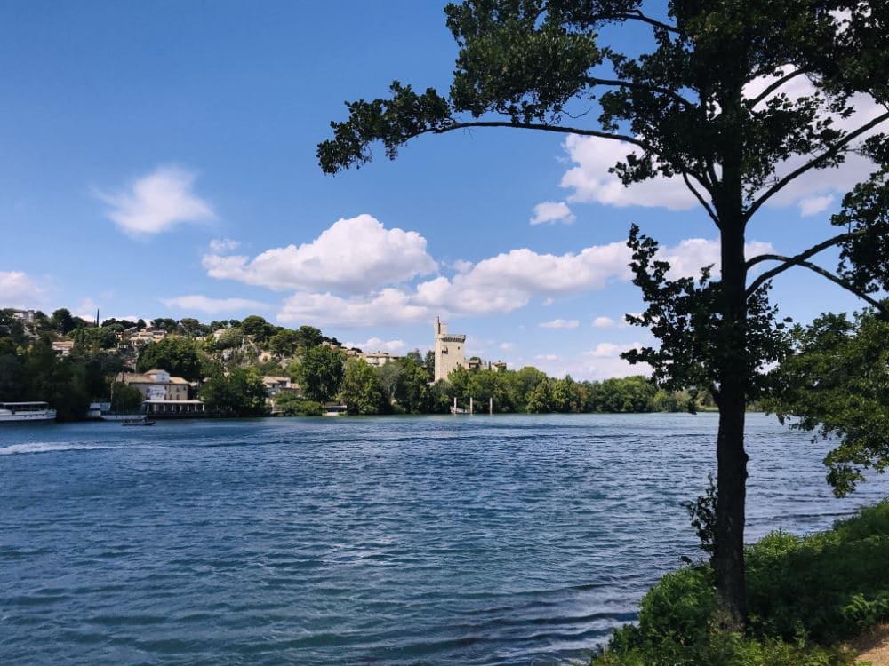 View of Villeneuve-lès-Avignon from Île de la Barthelasse