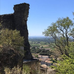 Châteauneuf-du-Pape: The Village and Wine of the Popes 4