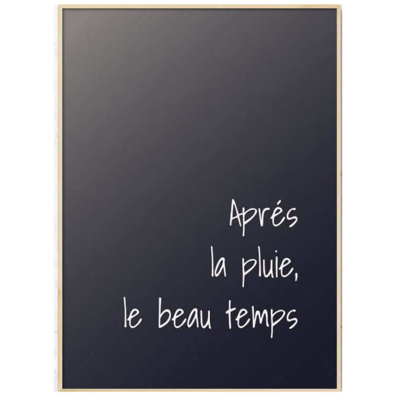 French inspirational quotes: 21 Proverbs to motivate & enjoy (with translation) 5