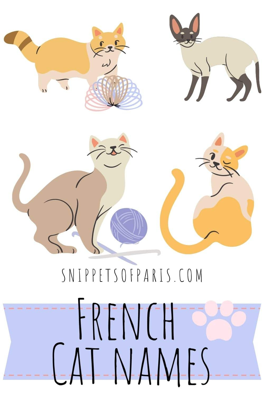 French Cat Names: 139 cute names for your kitten