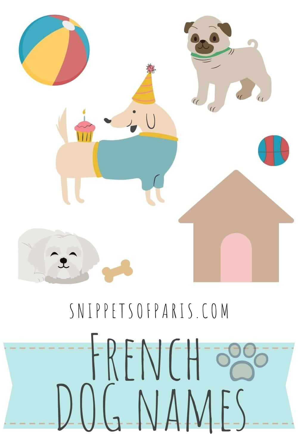 French Dog Names: 131 unique names for your puppy