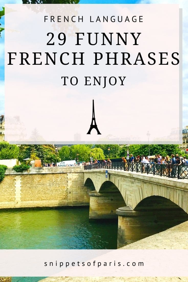 30 Funny French Phrases & Idioms (Life, Animals and more)