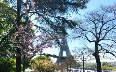 49 Famous and Beautiful Quotes about Paris, France