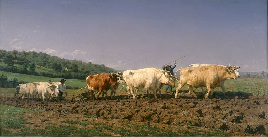 Ploughing in Nevers by Rosa Bonheur