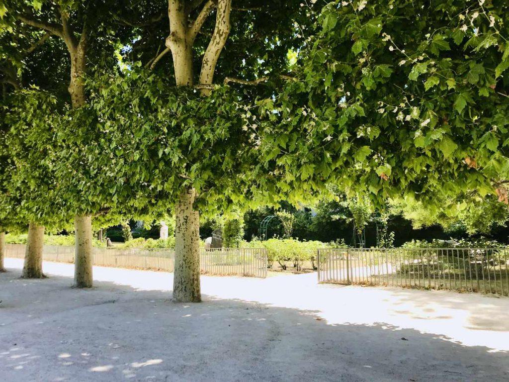 Gardens at Jardin des plantes