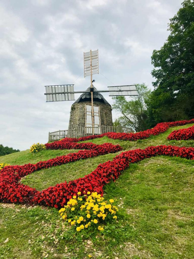 Moulin de Lautrec with red flowers in the shape of a christian cross in  front